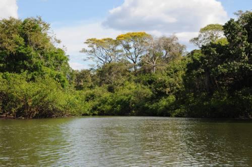 O Tocantins é um dos primeiros estados a reformular sua política de educação ambiental
