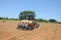 Para a correção da acidez do solo, aplicar calcário pelo menos três meses antes do plantio
