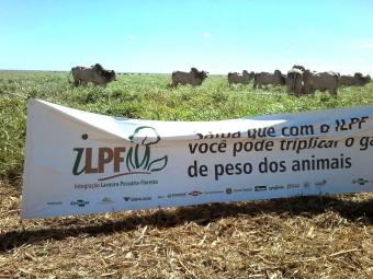 A Integração Lavoura-Pecuária-Floresta (ILPF) promove a recuperação de áreas de pastagens degradadas