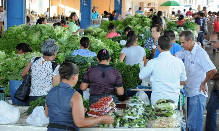 Hortifruti e produção agroecológica terão visitas a hortas e palestras direcionadas