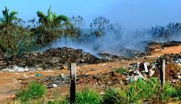 Degradação Ambiental (20)_260x150.jpg