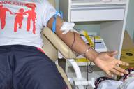 Para a doação de sangue, o Hemonúcleo de Gurupi funciona de segunda a sábado