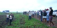 Dia de Campo-Ipucas-Lagoa da Confusão-06.12.13-Fernando Alves (112).JPG