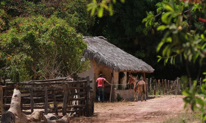 Pequena propriedade rural na região do Jalapão