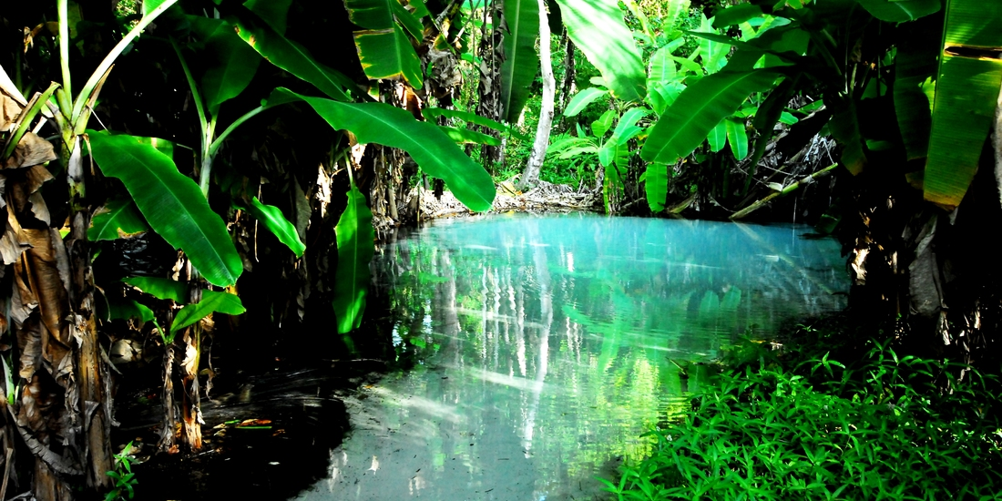 Fervedouro do Ceiça - Jalapão
