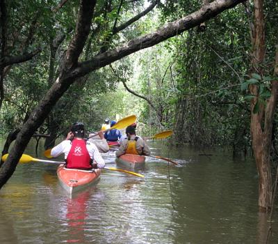 Trilha aquática de caiaque pelo Parque Estadual do Cantão