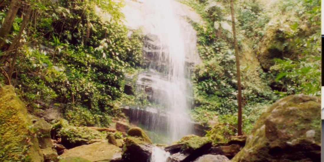 Cachoeira do Macaco - Taquaruçu _1100x550.jpg