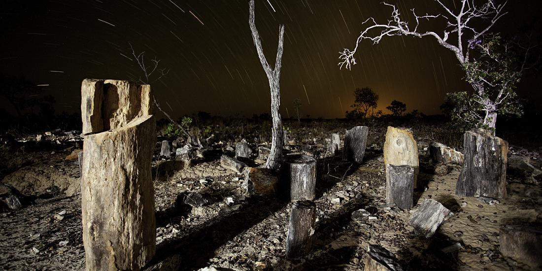 Monumento Natural das Árvores Fossilizadas - Foto Acervo Semades (1).JPG