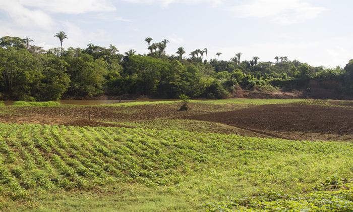 Propriedades rurais