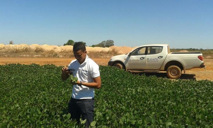 A Adapec cadastrou 686.228 hectares de soja.