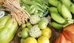 A 12ª Semana dos Alimentos Orgânicos será realizada de 30 de maio a 03 de junho