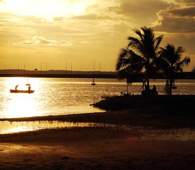 Praia da Graciosa - Palmas