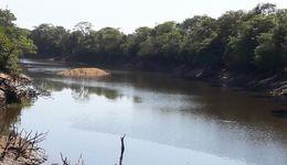A reunião com os irrigantes dos rios Formoso e Pium está prevista para a próxima quinta-feira, 21, no Centro de Convenções Leda Bernardon, localizado na Av Viturino Panta, Centro, a partir das 14h, no município de Lagoa da Confusão