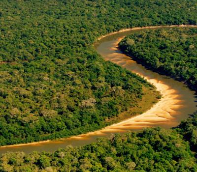 Coco river