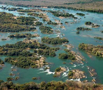 Peixe Tocantins fonte: central3.to.gov.br