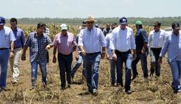 Marcelo Miranda visitou uma área de plantio e ressaltou a importância da cadeia produtiva de grãos para a economia do Estado e o compromisso do Governo em promover políticas públicas que beneficiem e incentivem cada vez mais o setor