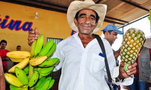 O PAA da Agricultura Familiar permite aos governos estaduais, prefeituras e órgãos federais da administração direta e indireta comprar alimentos de produtores locais