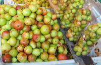 A feira tem como objetivo apresentar a comunidade e aos visitantes a mangaba e outros pratos típicos, como doces, licores e compotas, além de outros frutos do cerrado