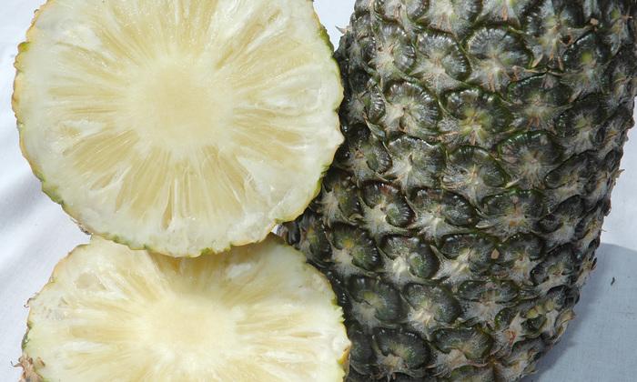 I Dia de Cultivo Orgânico sobre Abacaxi acontece na Fazenda Funil, município de Miracema do Tocantins, região Central do Estado, das 8h às 12h