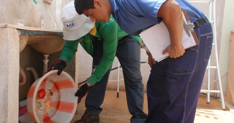 Água parada encontrada em utensílio de área de serviço doméstica pode se transformar em foco