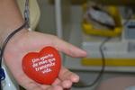 Doação de sangue ajuda a atender demanda de urgências de hospitais públicos e privados