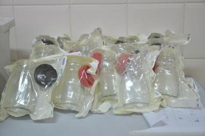 Kit enviados para as doadoras de leite humano do Banco de Leite