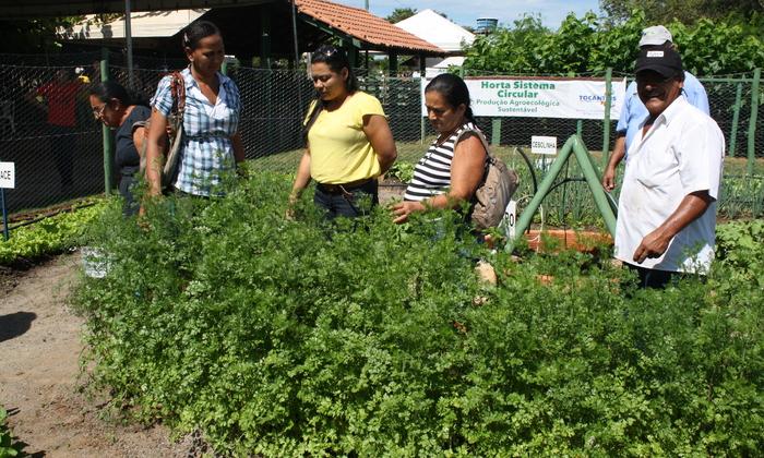 A ideia das unidades demonstrativas é mostrar ao agricultor tecnologias disponíveis para que ele produza melhor