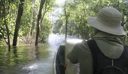 No Cantão a atração é a biodiversidade; os visitantes podem fazer trilhas aquática e terrestre