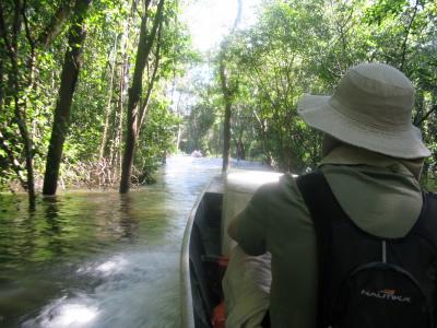 Os visitantes podem fazer trilhas aquática e terrestre.