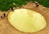 As barraginhas são usadas para regar as plantações e auxiliar na manutenção dos animais que são criados pelos pequenos produtores rurais