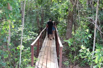 No meio da mata, o arvorismo é uma das atrações do Parque Estadual do Cantão
