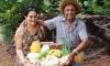Reunião com produtores discute Programa de Aquisição de Alimentos e crédito rural em Gurupi
