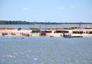 Com a proximidade da temporada de praias, Governo alerta para a oportunidade de qualificação
