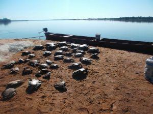 Blitz noturna surpreende infratores no rio Araguaia com R$ 199,5mil em multa