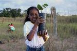 Crianças participam do plantio de mudas na cabeceira do Córrego Sossego