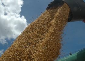 Campos Lindos é o 2º maior produtor de grãos do Tocantins