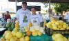 A feira, realizada na Praça Mestre Ananias, reuniu cerca de 50 produtores rurais