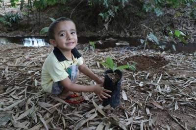 O pequeno Lorenzo, de 3 anos, realiza seu primeiro plantio
