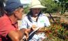 O agricultor Sebastião Ribeiro Filho recebe orientações da engenheira agrônoma Geane Rodrigues