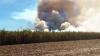 Fogo destruiu área de 118,98 hectares de um canavial da própria empresa