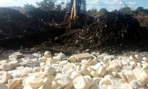 O proprietário da fazenda foi autuado em R$ 1 mil e os produtos foram destruídos no aterro sanitário de Augustinópolis