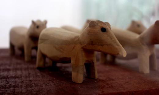 No Centro de Atendimento ao Turista, dentro da Unidade de Conservação, há uma lojinha que vende artesanatos que refletem a riqueza da fauna que compõe o Parque Estadual do Cantão