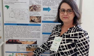 Servidora do Naturatins faz apresentações na USP sobre Análise da Influência do Monumento Natural das Árvores Fossilizadas do Tocantins