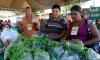 A Feira da Agricultura Familiar de Arraias já é uma tradição e integra a programação de aniversário da cidade
