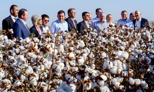 Marcelo Miranda participou do lançamento da colheita do algodão na Fazenda Boa Vista (MT)
