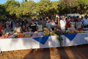 Mesa de frutas oferecida aos participantes da caminhada.