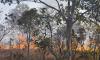 Tocantins está em quarto lugar no ranking de queimadas com 6.787 focos de incêndio. Fernando Alves/Governo do Tocantins