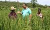 Encontro reúne 68 famílias e tem por objetivo otimizar a produção agrícola familiar