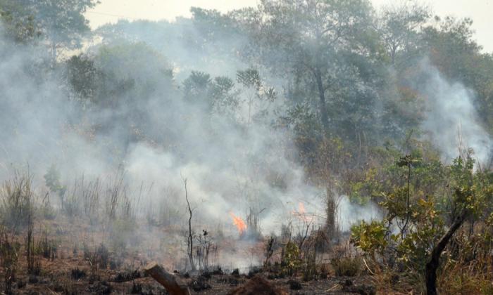 Objetivo é sensibilizar proprietários rurais e informar que até 30 de outubro está suspensa a realização de queimadas controladas