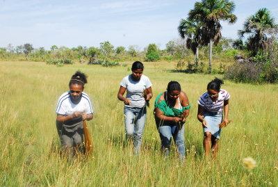 O evento marca o início da colheita do capim dourado, que este ano será dia 20 de setembro